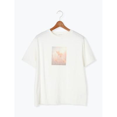 フラワーガーデンフォトTシャツ