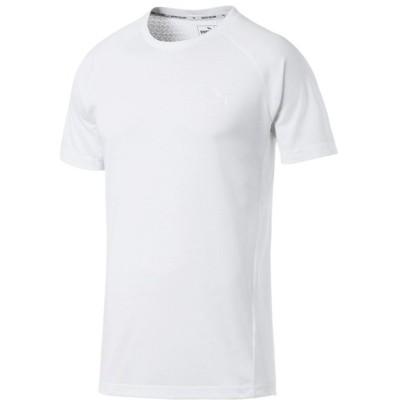 【販売主:スポーツオーソリティ】 プーマ/メンズ/EVOSTRIPE SS Tシャツ メンズ プーマホワイト XL SPORTS AUTHORITY
