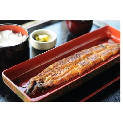 特大鰻の蒲焼き2尾セット