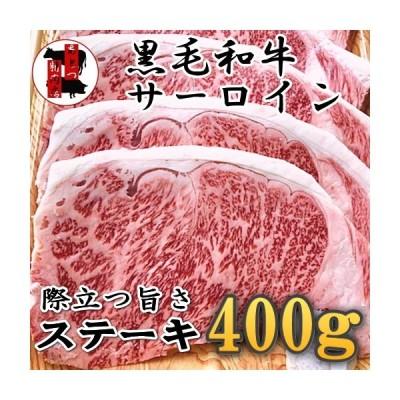 国産 黒毛和牛サーロインステーキ 最高級霜降り 500g(250g×2枚) ステーキ カットステーキ 冷凍