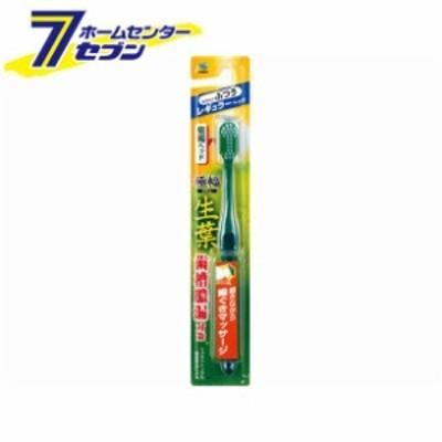生葉(しょうよう)極幅ブラシ 歯ブラシ レギュラーヘッド ふつう小林製薬 [ハブラシ はぶらし]