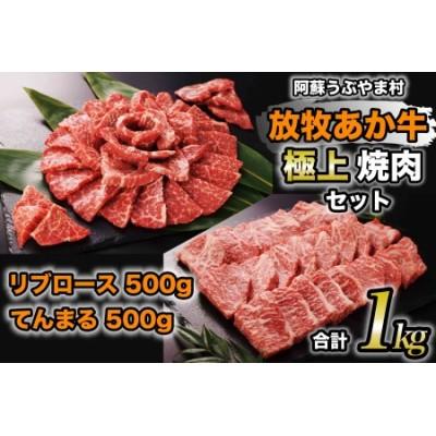 阿蘇うぶやま村の放牧あか牛極上焼肉セット【1094487】