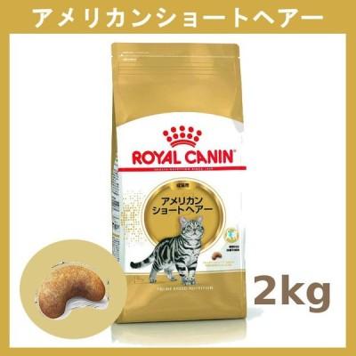 ロイヤルカナン アメリカンショートヘアー 成猫用 2kg 3182550861700