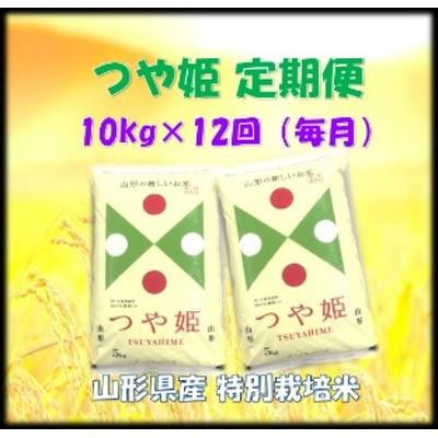 特別栽培米つや姫10kg×12回(毎月)深瀬商店提供 定期便 特A 精米 5kg×2袋 A-0775
