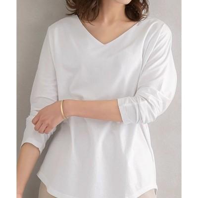 tシャツ Tシャツ VネックドルマンTシャツ 綿100%