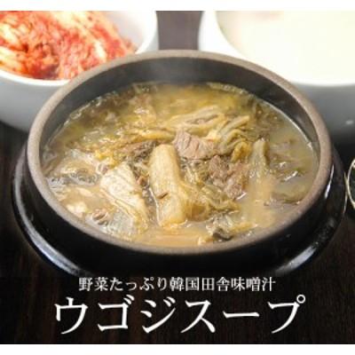 韓国ハウチョンの野菜タップリ・ウゴジスープ570g(約2食分)【常温・冷蔵可】