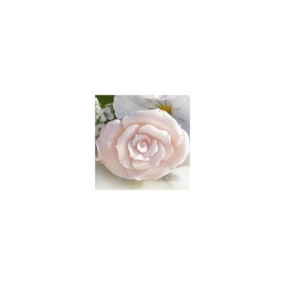天然ピンク珊瑚 カメオ K18  SILVER ペンダント  ブローチ 【 胸に咲く一輪の薔薇】