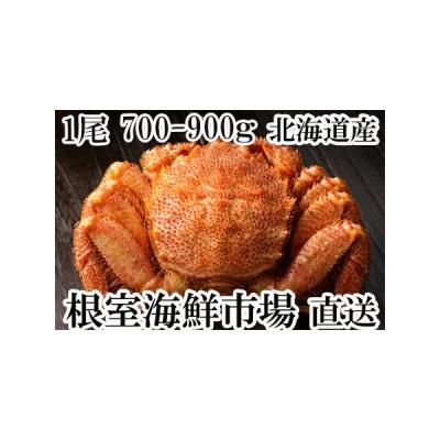 ふるさと納税 根室海鮮市場<直送>毛がに700〜900g×1尾 B-28020 北海道根室市