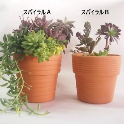 植木鉢 ハット型5号スパイラル プランター テラコッタ 日本製