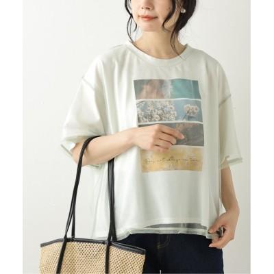 (framesRayCassin/フレームスレイカズン)チュール重ねTシャツセット/レディース ミント