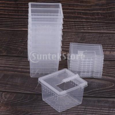 昆虫 爬虫類 クモ テラリウム 繁殖箱孵化容器 10個セット