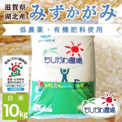 令和2年 滋賀県産 みずかがみ 白米 10kg