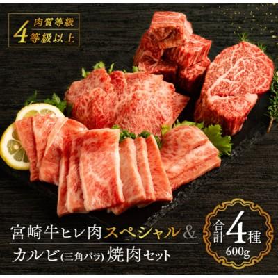 宮崎牛ヒレ肉スペシャル&カルビ(三角バラ)焼肉セット《合計600g》