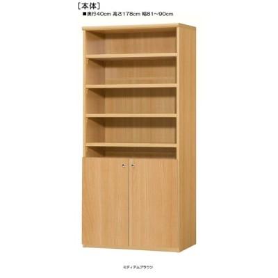 下部扉 大収納ラック 高さ178cm幅81〜90cm奥行40cm厚棚板(棚板厚み2.5cm) 下扉高さ72.5cm 教科書棚 客室