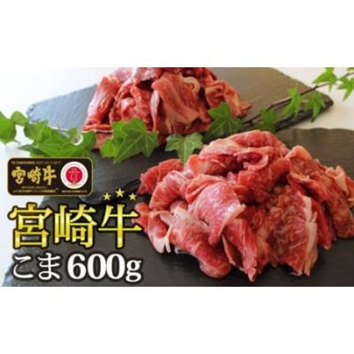 宮崎牛こま肉600g(300g×2パック)
