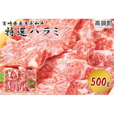 c610_tf <宮崎県産黒毛和牛特選ハラミ500g>翌月末迄に順次出荷