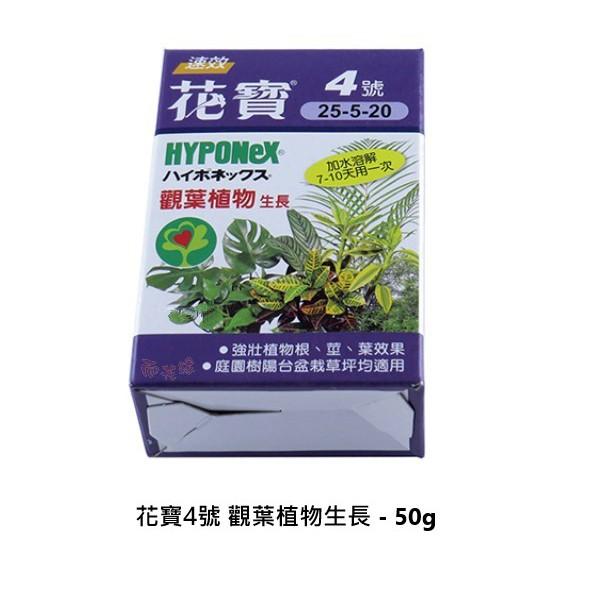 花寶4號 觀葉植物生長 - 50g