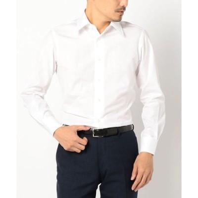 SD: 【ALBINI社製生地】ファインフィット ソリッド レギュラーカラー シャツ(ホワイト)