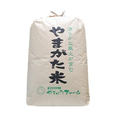 白米にして発送2019年山形県産 はえぬき 玄米 一等米 30?