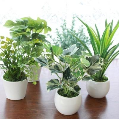 造花 インテリアグリーンミニポット5点アソートセット 観葉植物 配送日指定不可 CT触媒 人工観葉植物 フェイクグリーン