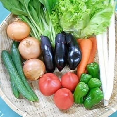 旬野菜の詰め合わせ 「大地の恵みセット」 10種以上