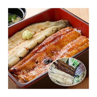 築地魚群 浜名湖うなぎ 蒲焼き・白焼きセット(4人前) 国産鰻