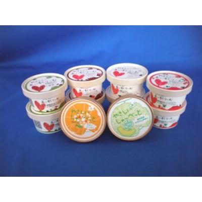サンオーネスト やさしいあいすくりーむ10個セットC (アイスクリーム)■送料無料■