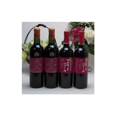 ワインセット シャンモリマスカット・ベリーーA赤ワインセット 山梨県産ぶどう100% 樽熟成マスカット・ベリーーA2本 マスカッ