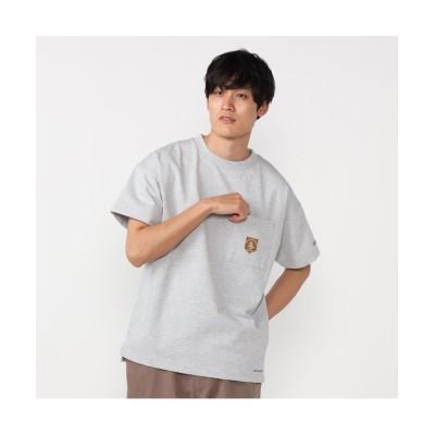 (Columbia/コロンビア)ビッグイエローメドウショートスリーブTシャツ/メンズ グレー