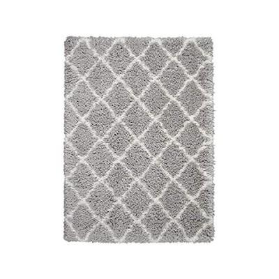 〈新品送料無料〉Nourison Ultra Shag Grey and White Plush Area Rug 5' x 7', 5'X7', Ivory並行輸入品