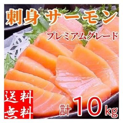 トラウトサーモン 刺身 約10kg前後 生食 お造り 冷凍 業務用 フィレ 寿司 切り身 プレミアムグレード 特大 半身