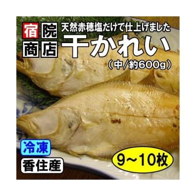 香住産 干カレイ 中 9〜10枚 約600g かれい カレイ 鰈 干物 ひもの お取り寄せ ギフト