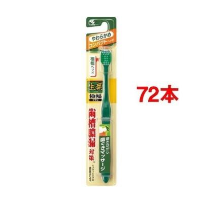 生葉 極幅ブラシコンパクト やわらかめ ( 72本セット )/ 生葉