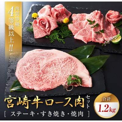 宮崎牛ロース肉セット(ステーキ・すき焼き・焼肉)合計1.2kg
