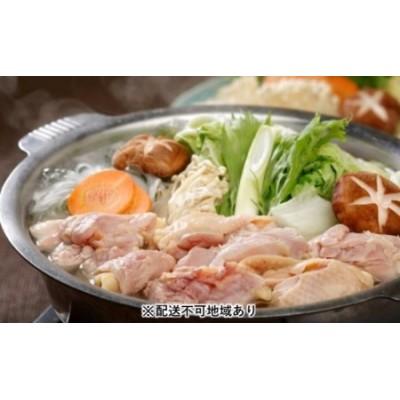 天草大王 地鶏 鍋セット 800g(がらスープ付き)【配送不可:離島】
