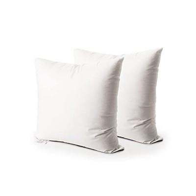 Edow スローピローインサート 2個セット ダウン代替ポリエステル 正方形フォーム 装飾枕 クッション シャム詰め物 ホワイト 22x22