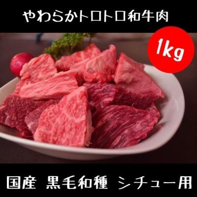 牛肉 和牛 シチュー用 1kg セット カット済み 国産