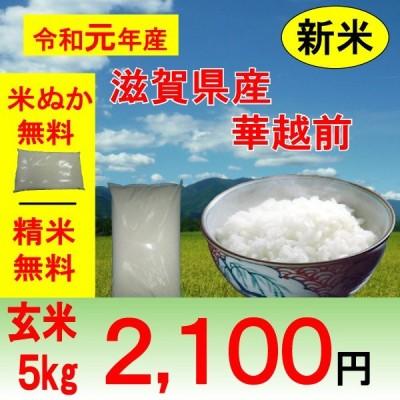 米 5kg 滋賀県 ハナエチゼン 華越前 1等玄米
