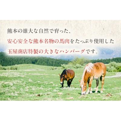 熊本県産 馬肉×牛肉 大きなハンバーグ 150g×12個 《30営業日以内に順次出荷(土日祝除く)》 ハンバーグ 冷凍 肉 お手軽 お取り寄せ
