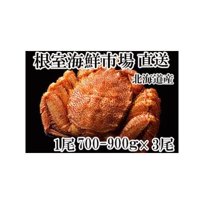 ふるさと納税 ボイル毛がに700〜900g×3尾 D-11004 北海道根室市