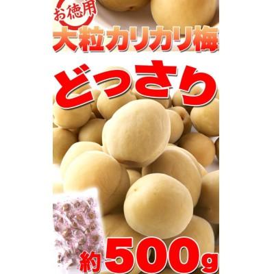 『国産豊後梅100%使用。無着色お徳用大粒カリカリ梅500g』(割引不可)5個で送料無料【5-12営業日前後で出荷