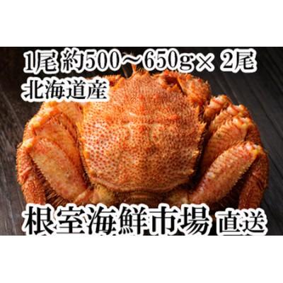 根室海鮮市場<直送>ボイル毛がに500~650g×2尾 C-28003