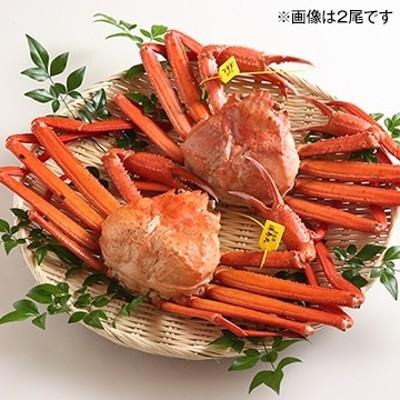 兵庫県タグ付香住ガニ茹で丸ガニ約600g
