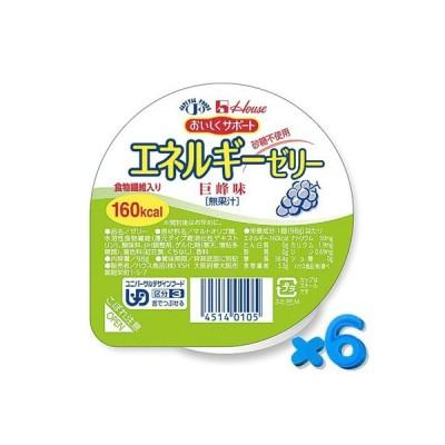 ハウス おいしくサポート エネルギーゼリー 巨峰 98g【6個セット】 ハウス食品 介護食【YS】