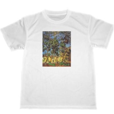 ゴッホ ドライ Tシャツ セントポール病院の庭の木々 名画 絵画 グッズ フィンセント・ファン・ゴッホ