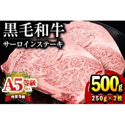 鹿児島県産黒毛和牛!A5等級サーロインステーキ500g(250g×2枚)バランスの良い国産の霜降り牛肉!【前田畜産たかしや】