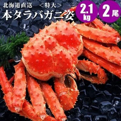 特大 タラバガニ姿 2.1kg × 2尾 カニ の王様 タラバガニ 姿 蟹 ギフト