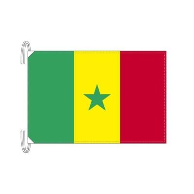 セネガル 国旗 Lサイズ 50×75cm テトロン製 日本製 世界の国旗シリーズ