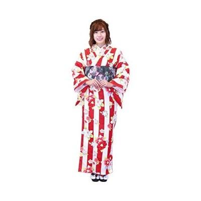 (キョウエツ) KYOETSU ククー メモワール レディース洗える袷着物 仕立て上がり M (18-Ca M)