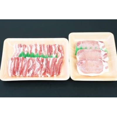 □【ブランド黒豚】かごしま黒豚 600g とんかつ用 & 焼肉用